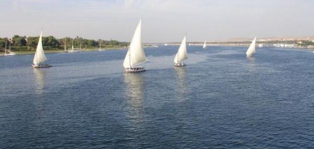 بحث عن نهر النيل وأهميته