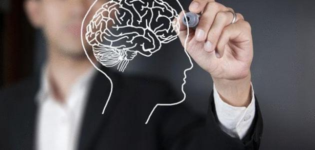 ما هو العقل