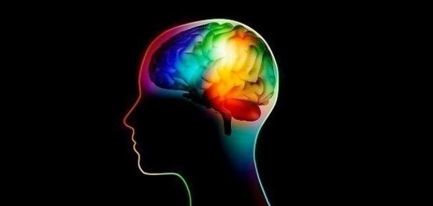 الفروق الفردية في التفكير والذكاء