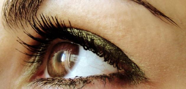 056dc35808958 أنواع العيون - موضوع