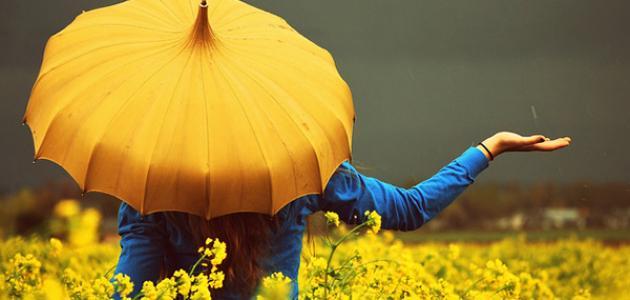 تفسير اللون الأصفر