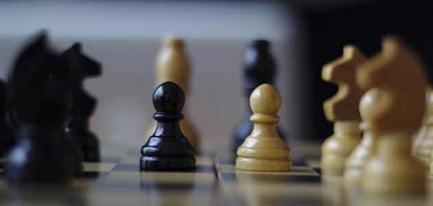 معلومات عن لعبة الشطرنج