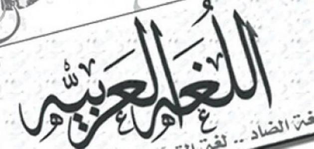 أقوال في اللغة العربية