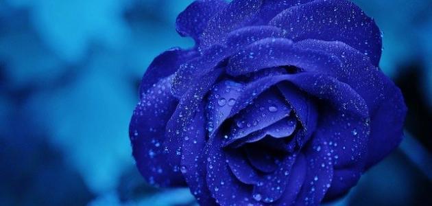 دلالة اللون الأزرق