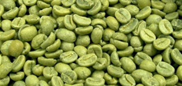 فوائد البن الأخضر