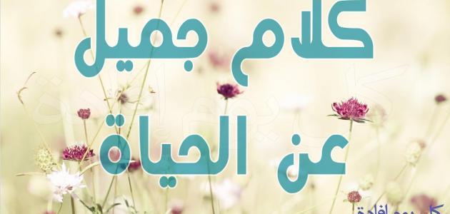 كلام جميل في الحياة