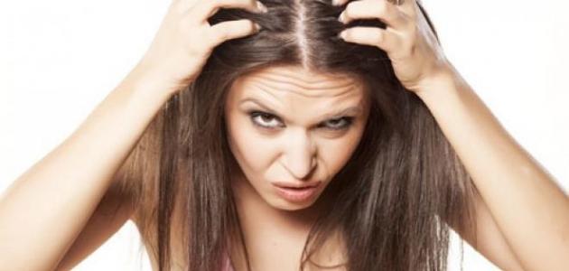 الشعر الخفيف