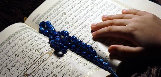 كم عدد سور القرآن الكريم
