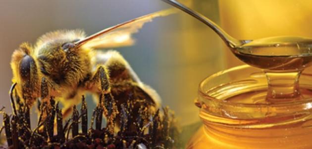 تعريف سورة النحل