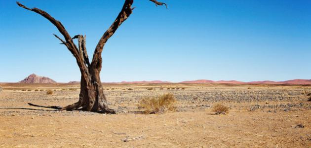 أسباب ندرة المياه في شبه جزيرة العرب