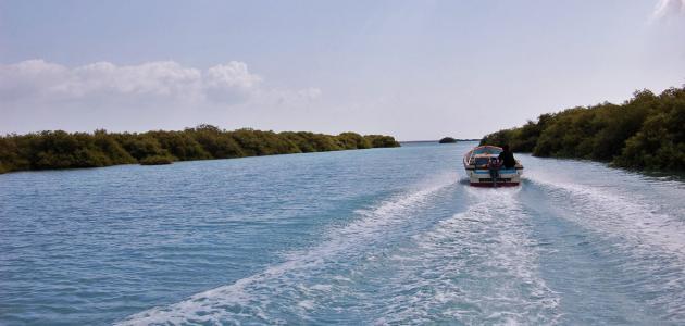جزيرة كمران