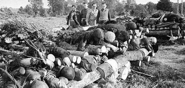 عدد ضحايا الحرب العالمية الثانية
