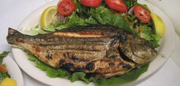 أطباق سمك