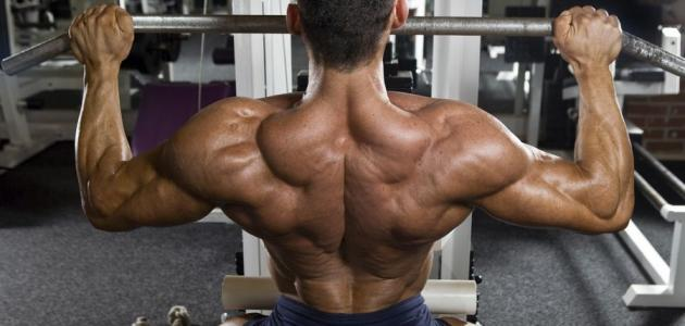 تمارين رياضة كمال الأجسام