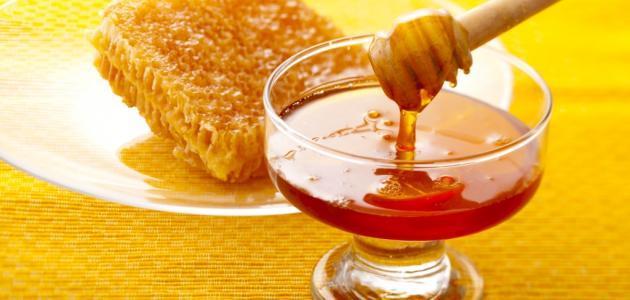 فوائد عسل الطلح