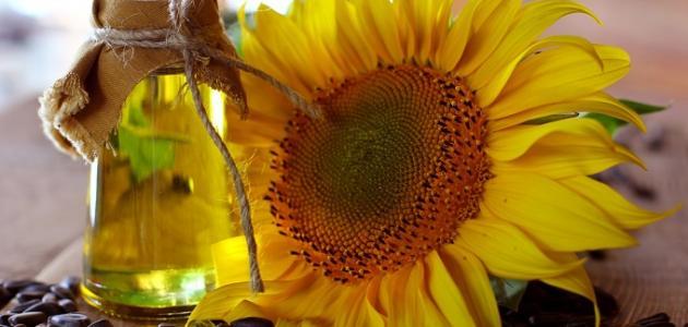 فوائد دوار الشمس