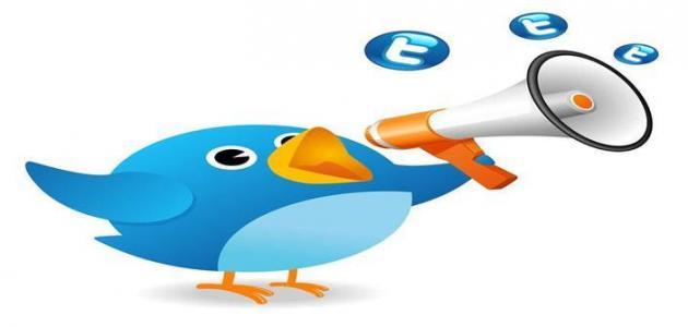 معلومات عن التويتر