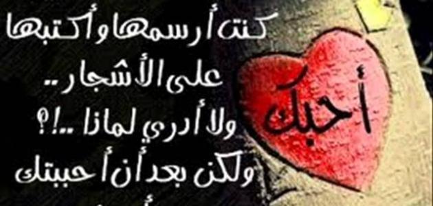 كلمات في الحب والعشق