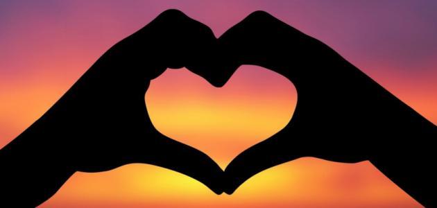 موضوع تعبير عن حب مصر