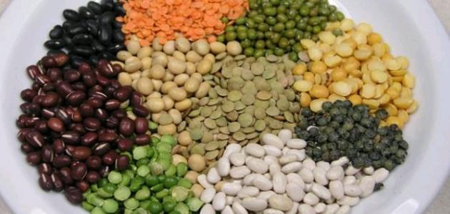 البروتين النباتي