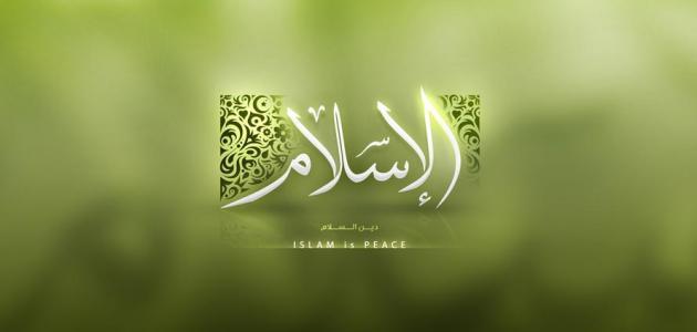 الطريق إلى الإسلام