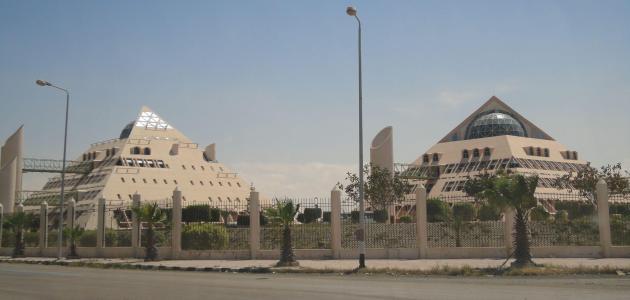 مدينة برج العرب