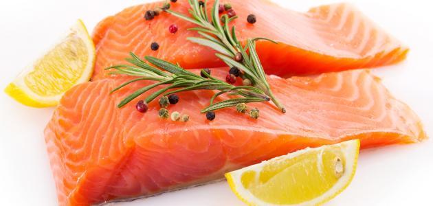 معلومات عن سمكة السلمون