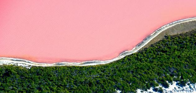 البحيرة الوردية في أستراليا