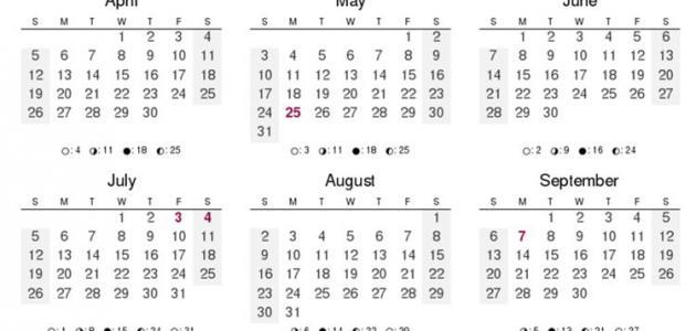 عدد أيام السنة الميلادية