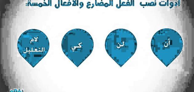 شروط_إعراب_الأسماء_ا
