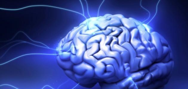 معنى الذكاء والفطنة