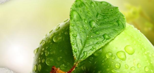 Benefits of green apples slimming