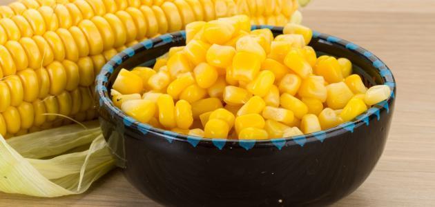 فوائد الذرة الحلوة موضوع