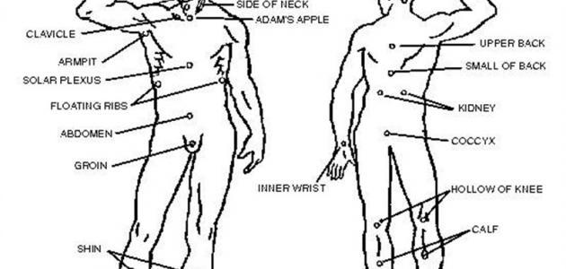 نقاط الضعف في جسم الإنسان