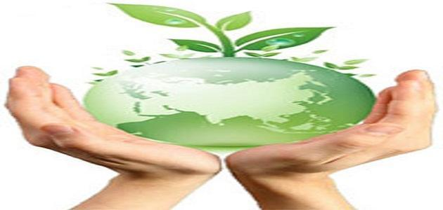 طرق المحافظة على البيئة في الإسلام