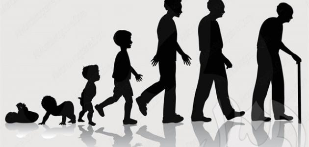 مراحل نمو الإنسان من الطفولة إلى الشيخوخة موضوع