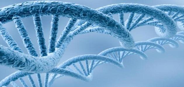 التشخيص الوراثي للأجنّة