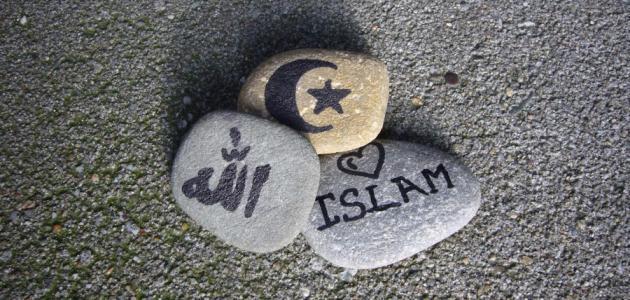 مفهوم عالمية الإسلام