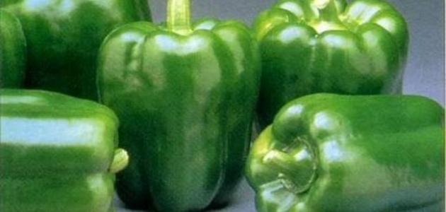 فوائد الفلفل الأخضر للشعر