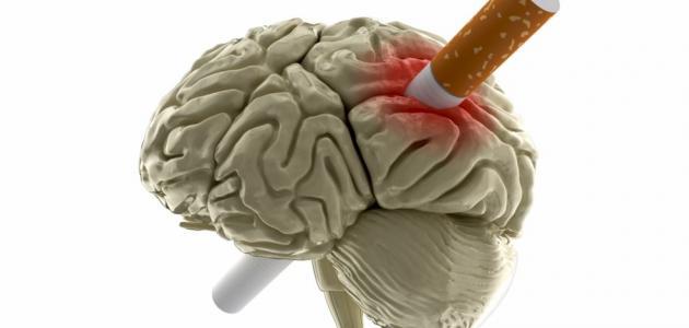 بحث حول التدخين وأضراره
