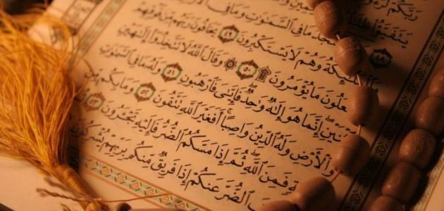 من هي أول فدائية في الإسلام