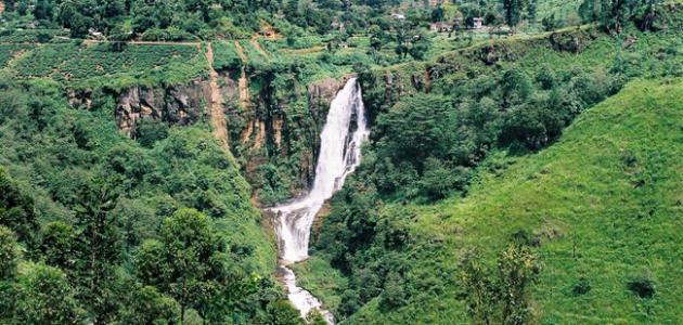 تقرير عن السياحة في سريلانكا