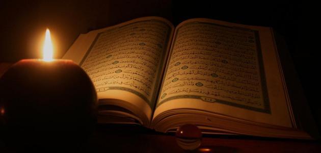 ما عدد سور القرآن الكريم