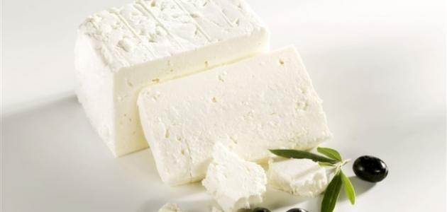 عمل الجبنة البيضاء