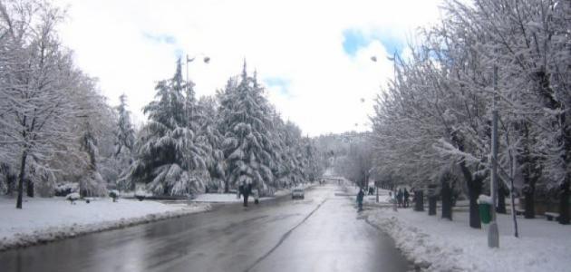 ما هي ذروة الشتاء