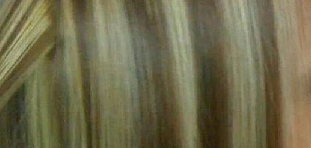 طريقة ميش الشعر