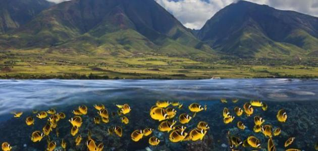 جزر هاواي والطبيعة الساحرة