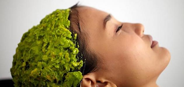 وصفة طبيعية لتساقط الشعر
