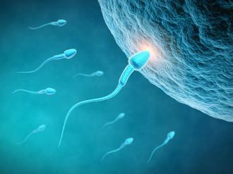 طرق تساعد على الحمل