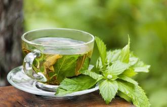 الشاي الأخضر.. فوائد متعددة %D9%85%D8%B6%D8%A7%D
